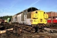 Class 31 to Class 37