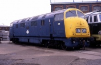 Class 42/43